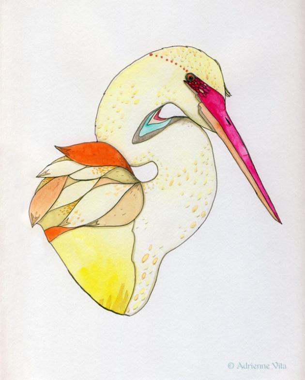egret_portrait