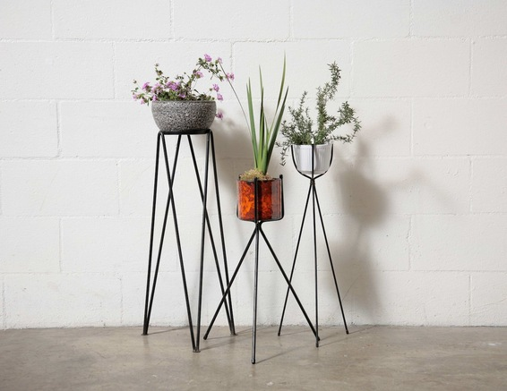 amsterdam_modern_plant_stand_forgyou